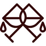 Logo__Icon–Drankencentrale-Vander-Schelde
